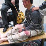 Poliziotti cinesi condannati a meno di tre anni: hanno torturato a morte un giovane