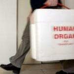 La Cina dovrà ritirare 400 studi sui trapianti perché coinvolti nel traffico d'organi?