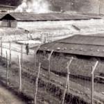 Campi di prigionia in Corea del Nord: rivelazioni shock da parte di una ex guardia