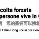 Petizione all'Alto Commissariato delle Nazioni Unite per i Diritti Umani per chiedere la fine immediata dell'espianto forzato di organi dai praticanti del Falun Gong in Cina
