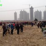 """""""Forconi"""" cinesi sfidano politica ufficiale di urbanizzazione"""