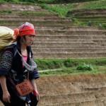 IL RATTO DELLE VIETNAMITE. Business in Cina delle spose-schiave [Video]