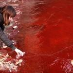 Cina: la catastrofe ambientale della Cina