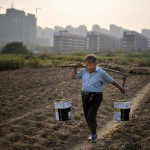 Acqua, latte e carne. Gli scandali alimentari in Cina