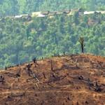 Birmania: condannati all'ergastolo 153 cittadini cinesi
