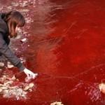 12 immagini shock dell'inquinamento in Cina