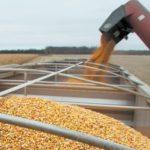 Tre multinazionali domineranno su sementi e fitofarmaci. La cinese ChemChina ex Syngenta controlla il 28% del mercato