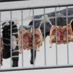 PRATO: polli appesi al terrazzo e olio di friggitrice nelle fogne.