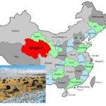Nomadi tibetani banditi dalla riserva naturale del sito dell' UNESCO in Cina