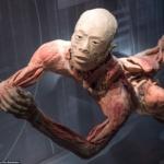 Vietata mostra su corpi umani cinesi: si teme siano di condannati della Falun Gong