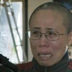 Proibita a diplomatici europei la visita a Liu Xia