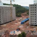 Allevamento intensivo, in Cina gli 'hotel per maiali' alti 13 piani dove tenerne a migliaia [VIDEO]