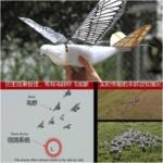 La Cina porta la sorveglianza a nuovi livelli con stormi di colombe robotiche, ma vengono in pace? [Video]
