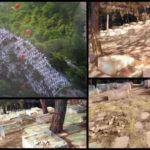 CINA: le statue buddhiste all'aperto devono sparire,non importa il costo