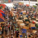 """Cina, gli animali macellati vivi: sotto accusa i """"mercati bagnati"""""""