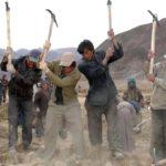 La Cina costringe 500.000 tibetani nei campi di lavoro forzato