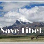 """Cina: """"Assalto finale al Tibet"""". Attacco ai mezzi di sussistenza tradizionali."""